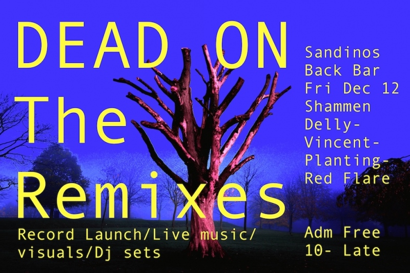 "Poster for event to launch of 12"" vinyl 'Dead On' one of Void Gallerys Artists' Gardens Public Art project 2013/14"